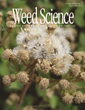 Survey Provides Insights on Distribution and Management of Giant Ragweed in the Corn Belt