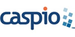 Caspio Teams Up with Zapier for Easier Application Integration