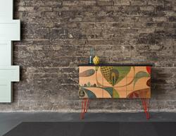 Semihandmade Cabinet/Rex Ray Doors