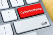Dr. Lynne Curry Offers Tips for Handling Cyber-bullying