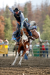 Cowboy competing in rodeo in Grand County