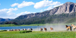 Brooks Lake Lodge & Spa is famous for its uniquely remote Wyoming location and range of activities for outdoor lovers such as horseback riding, fishing and hiking.