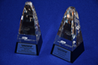 Cottman Wins Two Major Online Awards for the Cottman Man Blog and Educational Video Series