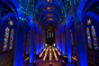 At Grace Cathedral's Carnival Gala in 2015, Got Light played with the venue's dramatic architecture.