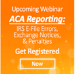 ACA Employer Mandate E-file Presenting Unforeseen Obstacles