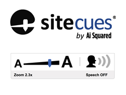 Sitecues is a SaaS accessibility product that builds zoom, speech and other capabilities right into websites