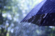 Weatherbrella is specially designed to protect not only the top portion but the entire body
