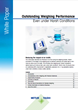 Outstanding Weighing Performance White paper
