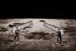 $4.5 Million Dollar Meteorite Pistols Unveiled