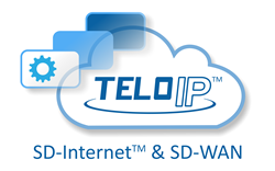 The TELoIP Cloud delivers SD-Internet and SD-WAN