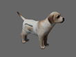 Dogpers surrounds your pet with soft absorbency that's not bulky.