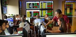Roland George Investments Program, Stetson University