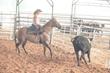 Team Semper Fi Jinx McCain Horsemanship Program - Sorting