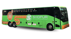 Cheap Bus Tickets from Dallas to Houston