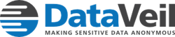 DataVeil static data masking software