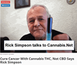 The Secret To Treating Cancer Is Cannabis THC, Not Cannabis CBD As Many Believe Says Rick Simpson In New Interview