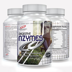 Power Blendz Digestive nZYMES