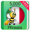 Learn Italian 5,000 Phrases Soon to Undergo Post-Launch Database Changes and Improvements