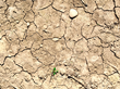 Planet Aid Applauds ND-GAIN for Focus on Disproportionate Impact of Climate Change on World's Poor