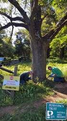 Rodney Stahl, Jr., Giroud Plant Health Care Manager and George Kistler, Giroud Applicator perform Tree-age Trunk Injections on valuable Ash trees at Pennypack Trust as part of a donation by Giroud Tree and Lawn