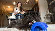 With the GoBone App, you can control it during playtime with your pup