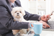 The American Pet Products Association (APPA) Supports Pets in the Workplace With a Look at Convenient, Office-Friendly Pet Products