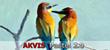 AKVIS Pastel 2.0
