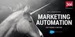 Marketing Cloud Provider 366 Degrees Extends Agency Revenue Share Model Via New Partner Program