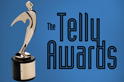 Carnegie Council Wins Bronze Telly Award