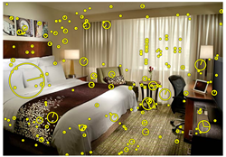 TraffickCam collects hotel room data