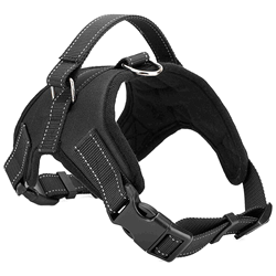 Dog Harness RoughTail Pet Supplies