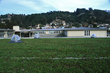 Korematsu Middle School Living Roof