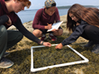 Earthwatch Institute and Durfee Foundation Empower Teens to Take Part in Science