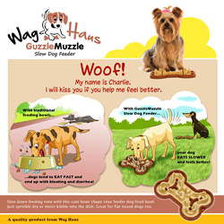 wag haus guzzle muzzle slow dog feeder
