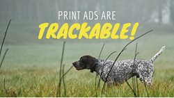 Shweiki Media Printing Company, Ryan Dohrn, 360 Ad Sales, Brain Swell Media, marketing, publishing, printing, sales
