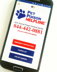 Pet Poison Helpline On VitusVet