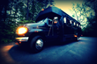 10, 15, 24, 32 & 45 passenger party buses