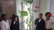 Our indoor school garden!