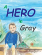 Cherie L Braham Releases 'A Hero in Gray'