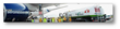 Aeromexico BioJet Fuel Flight
