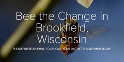 Bee the Change in Brookfield