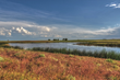 Colorado Premier Goose and Duck Hunting Preserve Auction