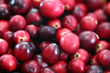Worcester Polytechnic Institute Announces Juicy News about Cranberries