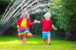 The sprinkler has a very wide range and can effectively water the entire lawn with ease.