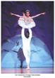 "Auditions held for Von Heidecke's Chicago Festival Ballet's ""Nutcracker Tour"" and Summer Intensive"