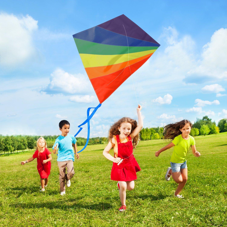 Toy Retailer Celebrates Record Breaking Sales for Kites on Amazon