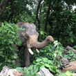 Mohan enjoying some cover shortly after release, July 23, 2016