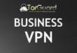 TorGuard Adds Business VPN Services
