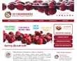 Cranberry Marketing Committee Unveils New Website