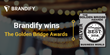 Brandify Honored as Silver Whitepaper of the Year Winner in the 8th Annual 2016 Golden Bridge Awards®